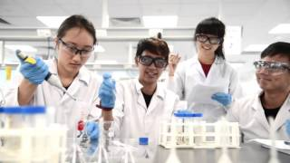 Download NUS Chemistry Department Video 2016 Video
