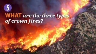 Download Introduction to Fire Behavior Video