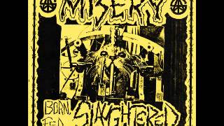 Download MISERY - Born, Fed .. Slaughtered Video