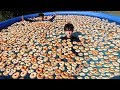1000 DONUTS IN POOL!