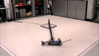 Download TU Delft robot Leo learns to walk Video