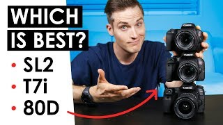 Download Best Canon DSLR for Video? — Canon SL2 VS. T7i VS. 80D Video