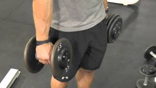 Download Secret Trick to Big Biceps Video
