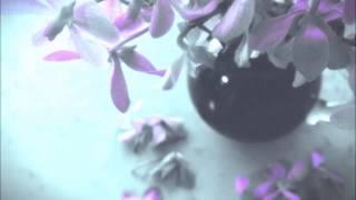 Download ドビュッシー: ベルガマスク組曲:月の光(管弦楽/カプレ編)[ナクソス・クラシック・キュレーション #ロマンチック] Video