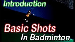 Download Badminton Beginners - Introduction of Basic Shots in Badminton Video
