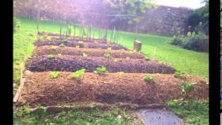 Download Permaculture : création et évolution d'une butte autofertile Video