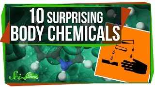 Download 10 Surprising Chemicals Your Body Makes Video