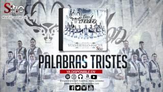 Download Banda Tierra de Venados - Palabras tristes Video