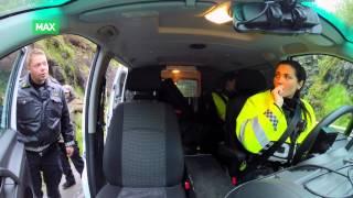 Download Politiet må avlive skadet måke Video