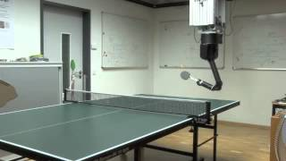 Download Towards Learning Robot Table Tennis Video