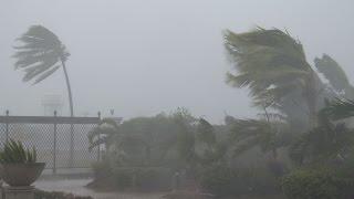 Download Strong Winds, Torrential Rain - Typhoon Noul 4K Stock Footage Screener Video