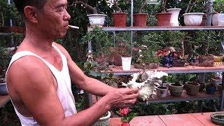 Download Theo chân nghệ nhân từ triển lãm Sông Cầu về Chí Linh, Hải Dương. Video