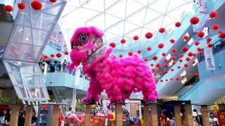 Download CNY2017 ~ Acrobatic Lion Dance (高樁舞獅 Múa Lân) by Shaolin Goh Chor 少林五祖@ 1 Mont Kiara (4K UHD) Video