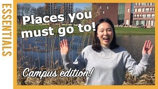 Download My 5 favourite spots on campus! What are yours? | WURtube Video