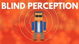 Download How Do The Blind Perceive The World? Video
