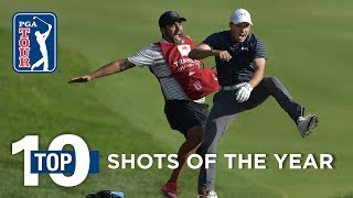 Download Top 10 shots on the PGA TOUR in 2017 Video