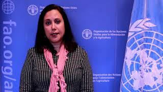 Download Verónica Guerrero, Representante de FAO en Nicaragua Video