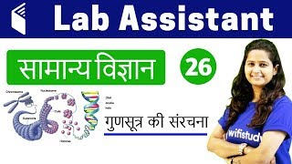 Download 2:00 PM - Lab Assistant 2018 | GS by Shipra Ma'am | Structure of Chromosomes Video