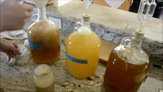 Download Making a Short Mead Video