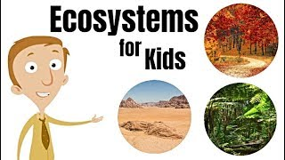 Download Ecosystems for Kids Video