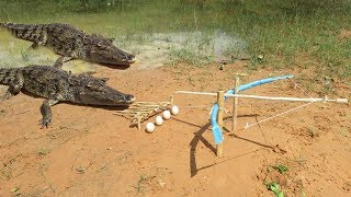 Download Primitive Technology: Man Make Crocodile Trap - How To Make Big Crocodile Trap Work Video
