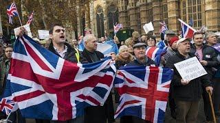 Download Protestors demand Brexit revote Video