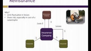 Download Analysis of insurance companies Video
