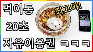 Download 햄스터 최고의선물 먹이통 자유이용권! 1주년 기념 파티 | 심쿵 햄찌 먹방 푸드파이터 | 심심타임 Video