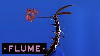 Download Flume - Hyperreal feat. Kučka Video