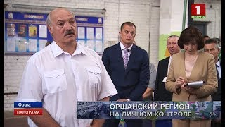 Download Рабочая поездка Президента Беларуси в Витебскую область. Панорама Video