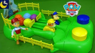 Download Paw Patrol Toys and Games Pup Racers Surprise Box Puzzle Funny Video for Kids Chase and Rubble Toys Video