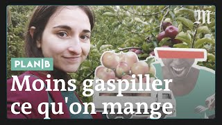 Download Comment arrêter le gaspillage alimentaire #PlanB Video