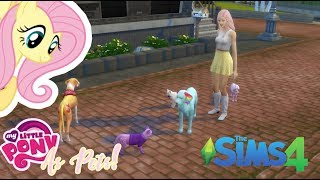Download ″PETS, YAY~!″ [Fluttershy Plays: Sims 4 MLP Ponies as Pets! - EP 1] Video