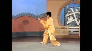 Download 103 Yang Style Tai Chi Quan Form Video