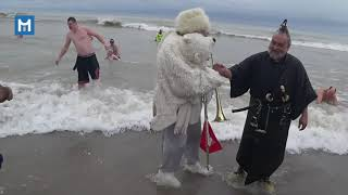 Download Highlights from Milwaukee's 2019 Polar Bear Plunge Video