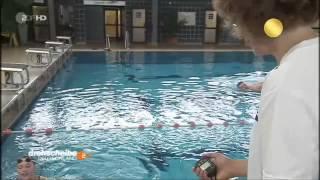 Download ZDF Drehscheibe Deutschland - Deutsches Sportabzeichen 2013 Video