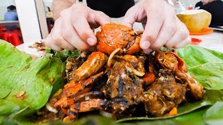 Download SPICY STREET FOOD Tour in Jakarta, Indonesia!! BEST MUD Crabs, BBQ Ribs, and PAINFUL Spice! Video