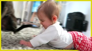 Download SHE'S GOING TO CRAWL!! Video