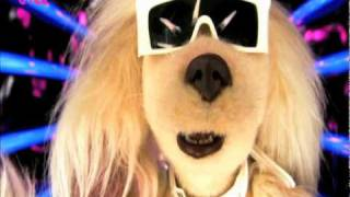 Download Ugly Women Are Beautiful Too Song - Mongrels - BBC Three Video