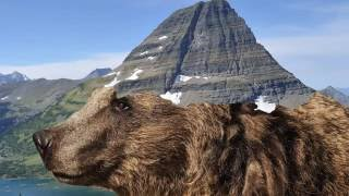 Download 1-Day Guide to US National Parks Video