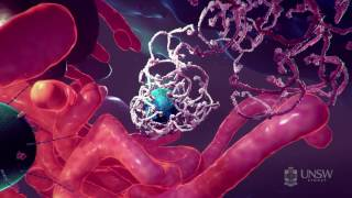 Download Nanoparticle-based drug delivery in the fight against cancer Video