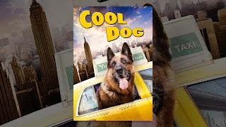 Download Cool Dog Video