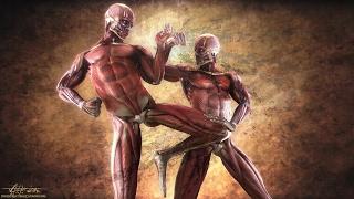 Download Top 10 MARTIAL ARTS Fighting Styles! ☯   Most Effective Dangerous Killing Techniques! - J Vargas TV Video