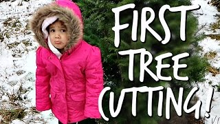 Download First Tree Cutting! - Dancember 10, 2016 - ItsJudysLife Vlogs Video