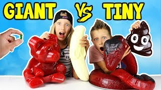 Download GIANT GUMMY vs TINY GUMMY!!! Video