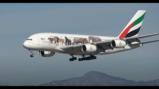 Download (HD) 3 Hours of Watching Airplanes   Los Angeles International Airport LAX Plane Spotting Video