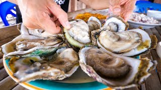 Download The Oyster King of Thailand - UNCLE TOM'S HUGE OYSTERS and Seafood at Floating Restaurant! Video