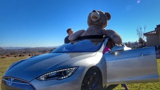 Download Tesla full of Teddy Bears! Video