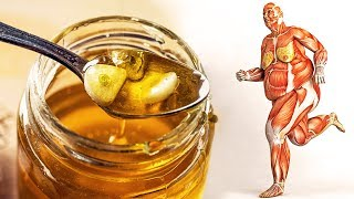 Download What Happens to Your Body When You Start Eating Honey Every Day Video