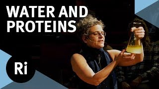 Download The Physics of Life: How Water Folds Proteins - with Sylvia McLain Video
